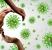 10-cuidados-para-el-coronavirus